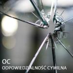 Ubezpieczenie OC w Niemczech